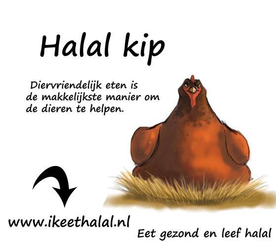 Halal+kip Halal kip