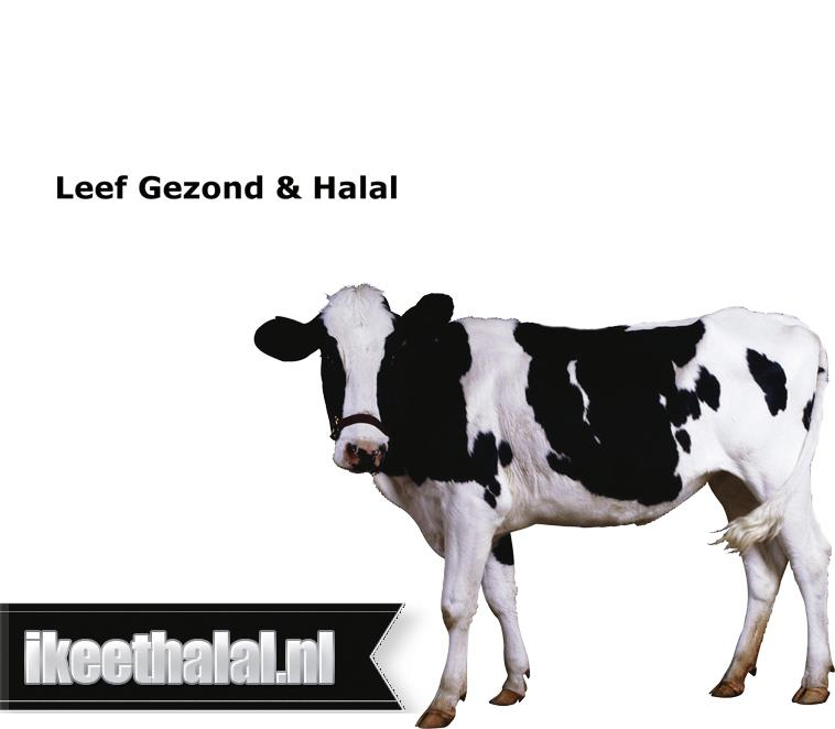Halal controles paard  varken in Döner