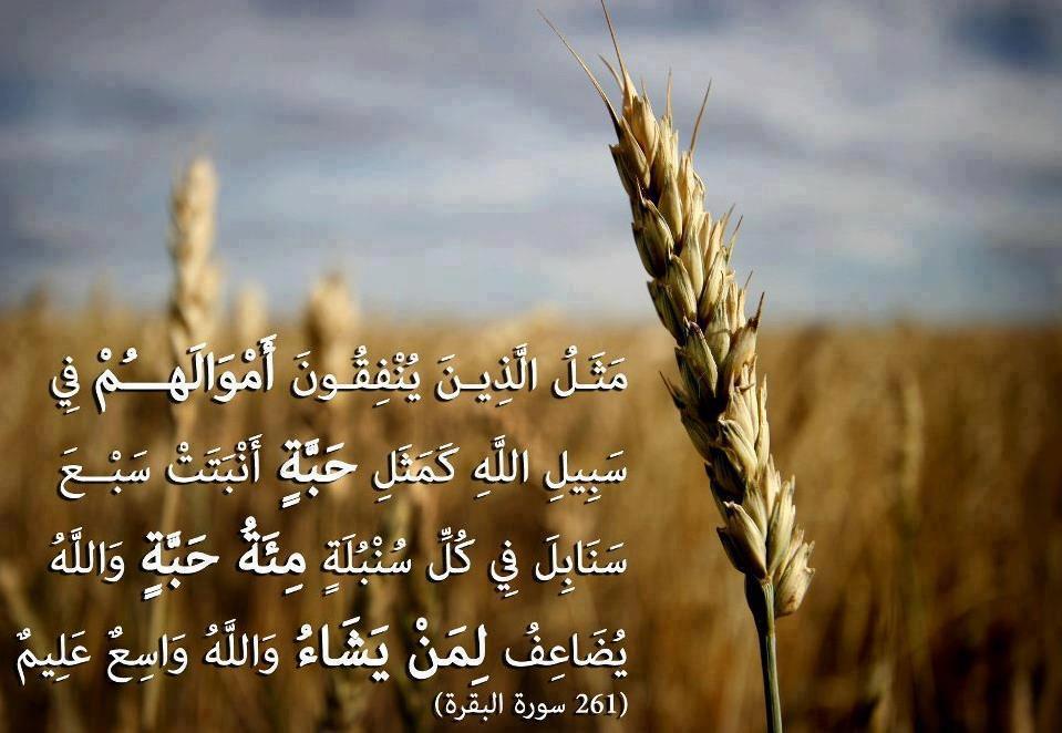 Voedsel in de Quraan
