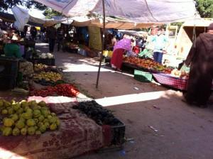 Fruit Hoesima