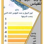 Wat zegt de kleur van je urine over je gezondheid?