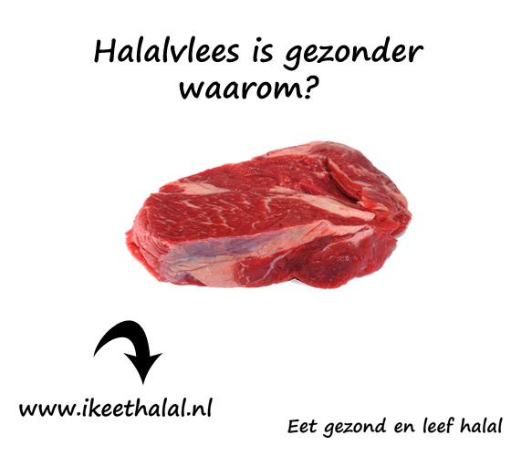 gezond halal