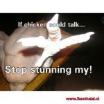 Stop het ontmoedigingsbeleid tegen onverdoofd slachten